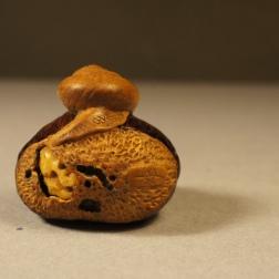 Snail on Chestnut netsuke 2016